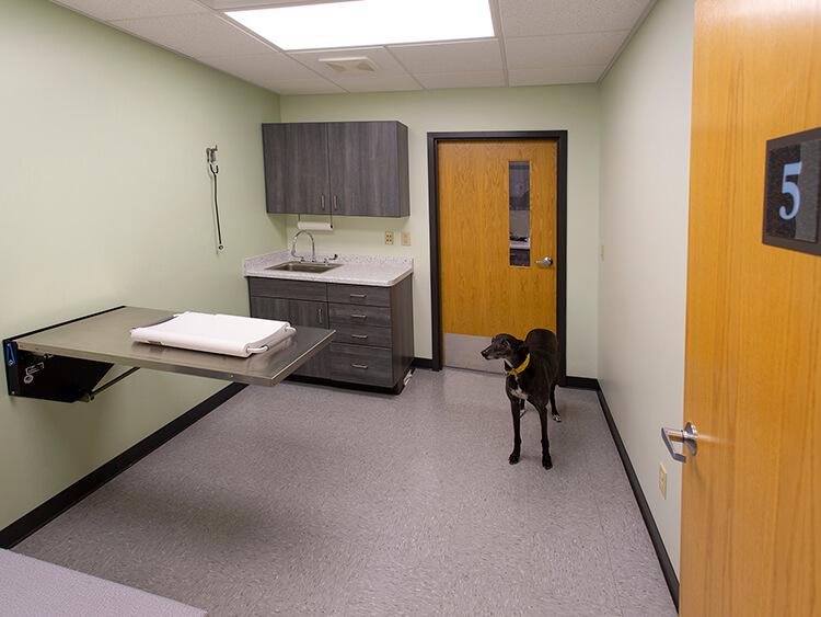 Truesdell Animal Clinic